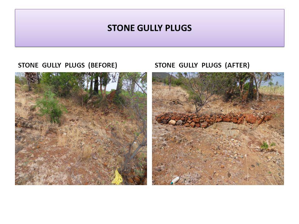 STONE GULLY PLUGS STONE GULLY PLUGS (BEFORE)STONE GULLY PLUGS (AFTER)
