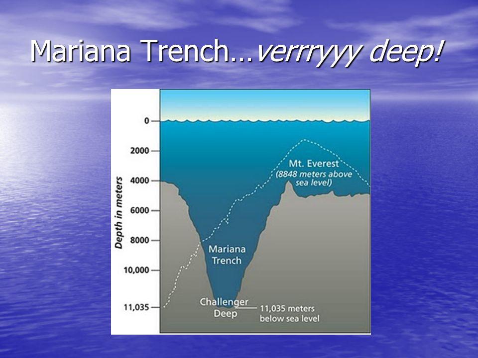 Mariana Trench…verrryyy deep!