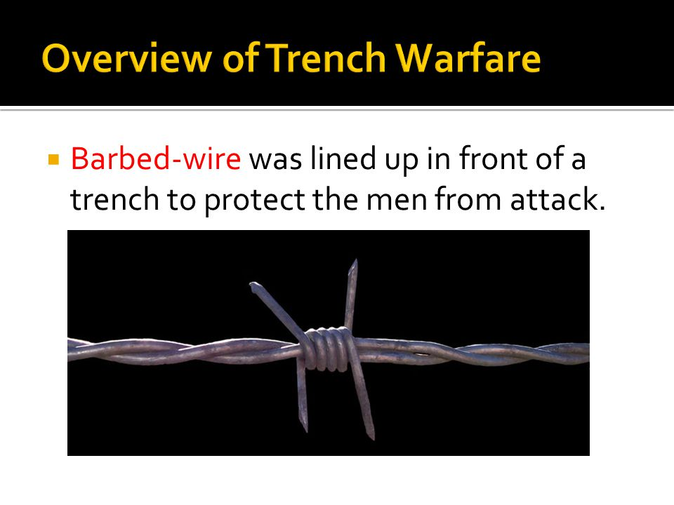 Overview of Trench Warfare  Barbed-wire was lined up in front of a trench to protect the men from attack.