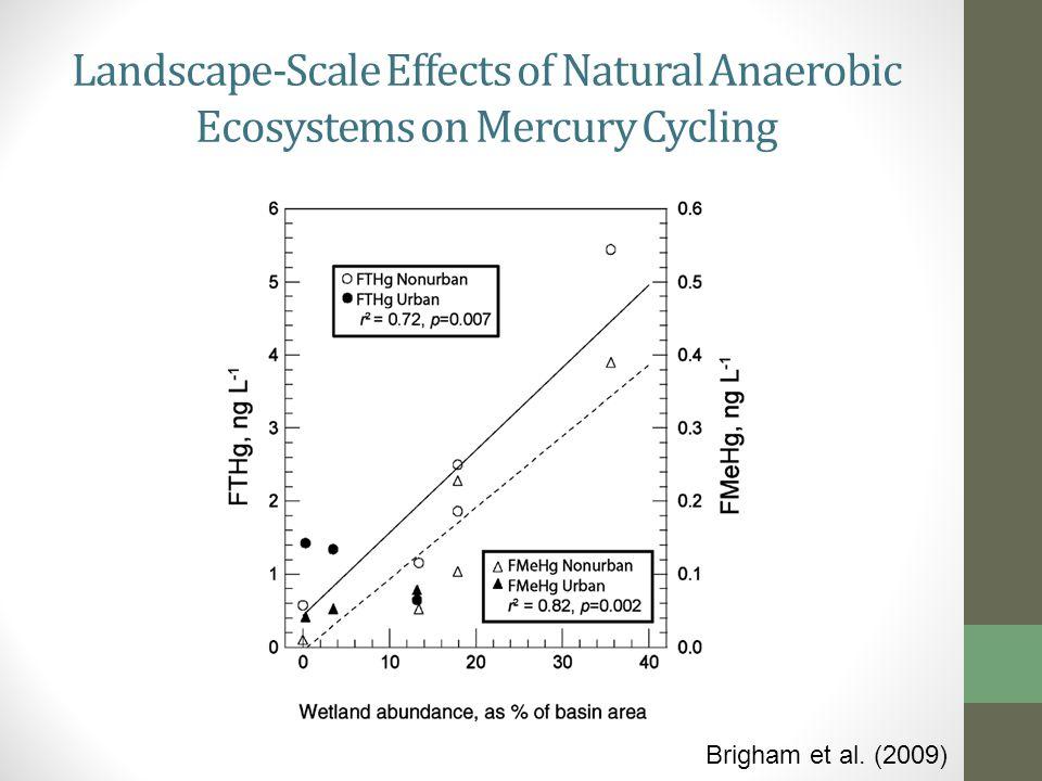 Intercomparison with USGS Wisconsin District Mercury Lab (Krabbenhoft)