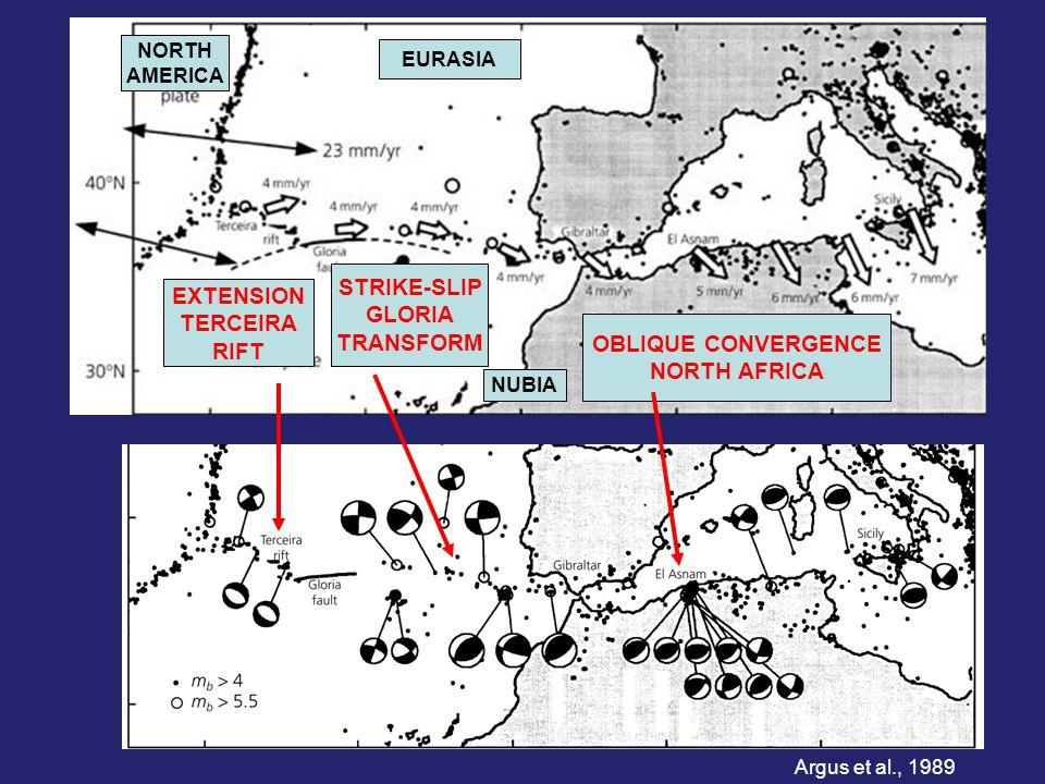 EXTENSION TERCEIRA RIFT STRIKE-SLIP GLORIA TRANSFORM OBLIQUE CONVERGENCE NORTH AFRICA EURASIA NUBIA NORTH AMERICA Argus et al., 1989