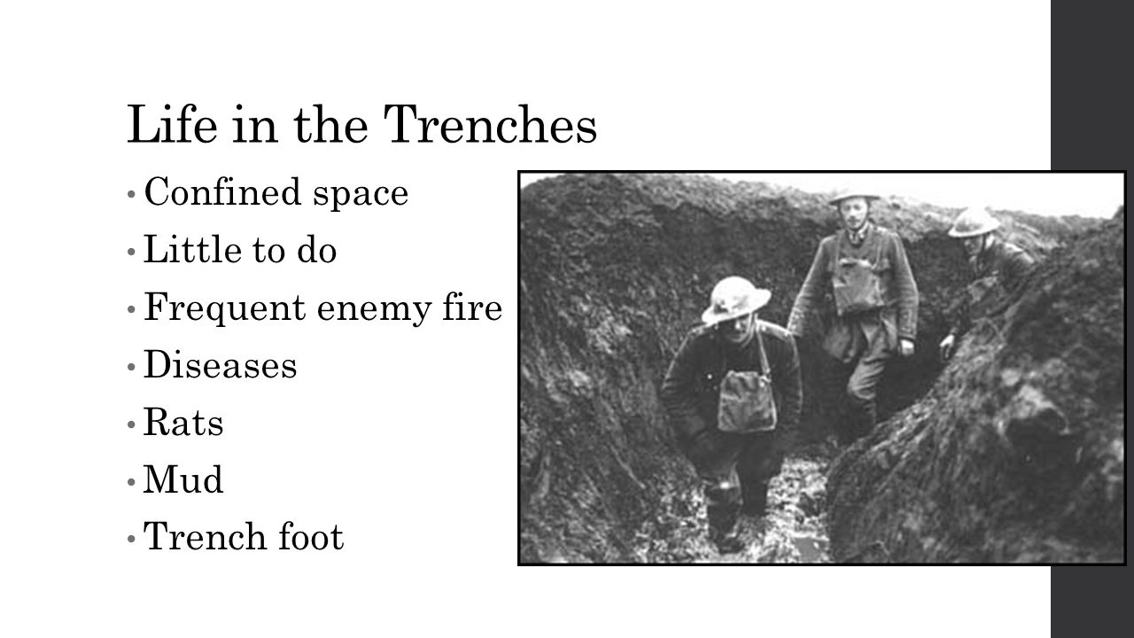 Life in the Trenches Confined space Little to do Frequent enemy fire Diseases Rats Mud Trench foot