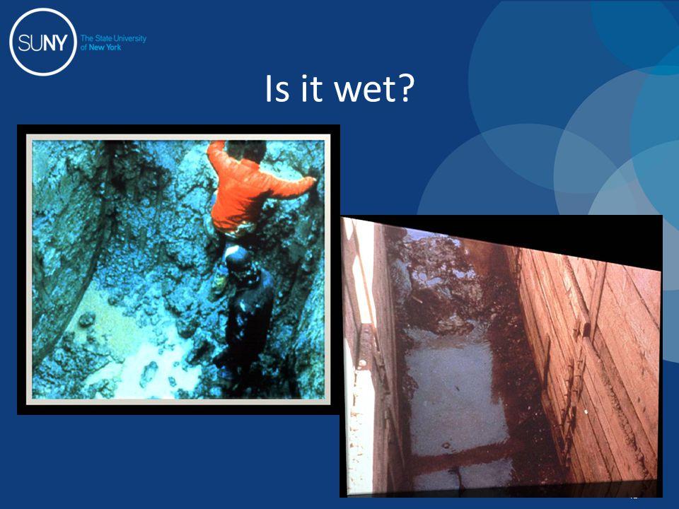 Is it wet? 43