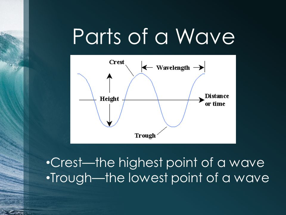 Parts of a Wave Crest—the highest point of a wave Trough—the lowest point of a wave
