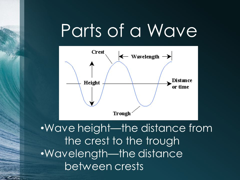 Parts of a Wave Wave height—the distance from the crest to the trough Wavelength—the distance between crests