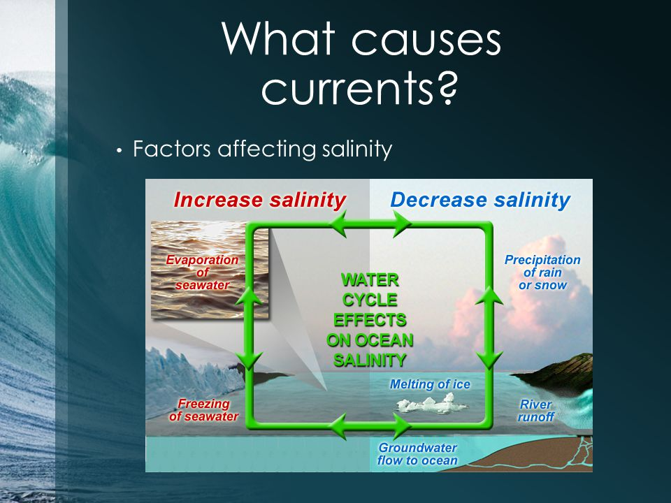 What causes currents? Factors affecting salinity