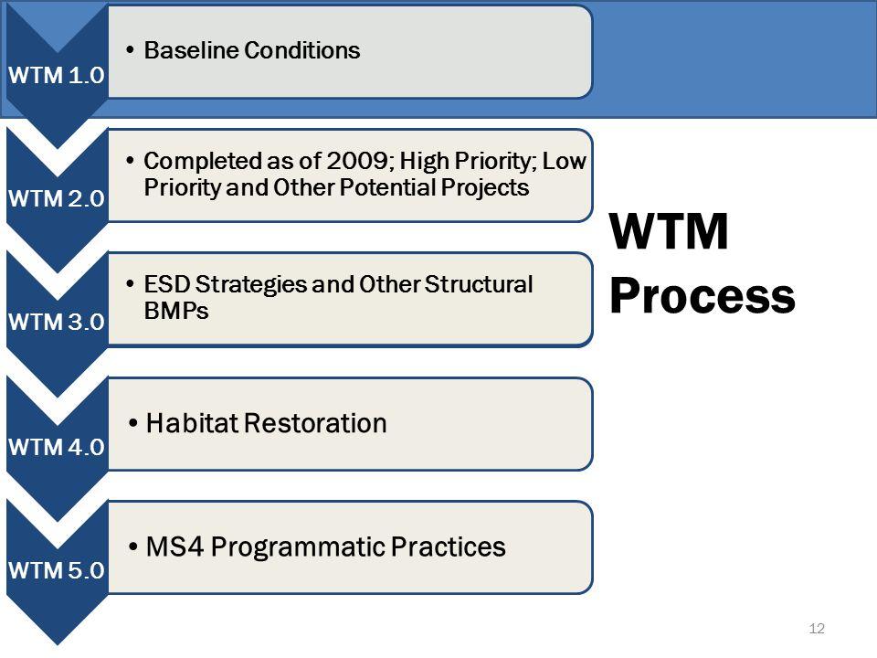 WTM Process 12