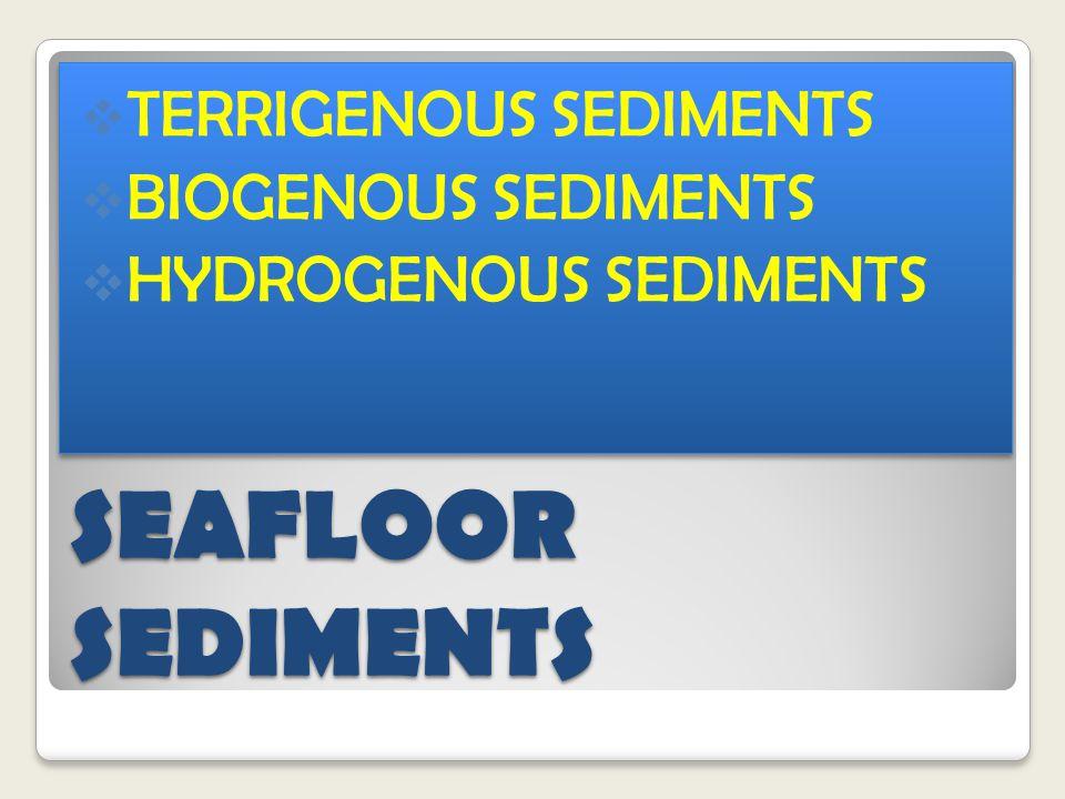 SEAFLOOR SEDIMENTS  TERRIGENOUS SEDIMENTS  BIOGENOUS SEDIMENTS  HYDROGENOUS SEDIMENTS  TERRIGENOUS SEDIMENTS  BIOGENOUS SEDIMENTS  HYDROGENOUS SEDIMENTS