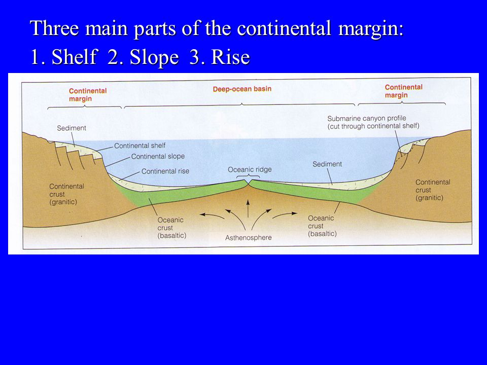Three main parts of the continental margin: 1. Shelf 2. Slope 3. Rise