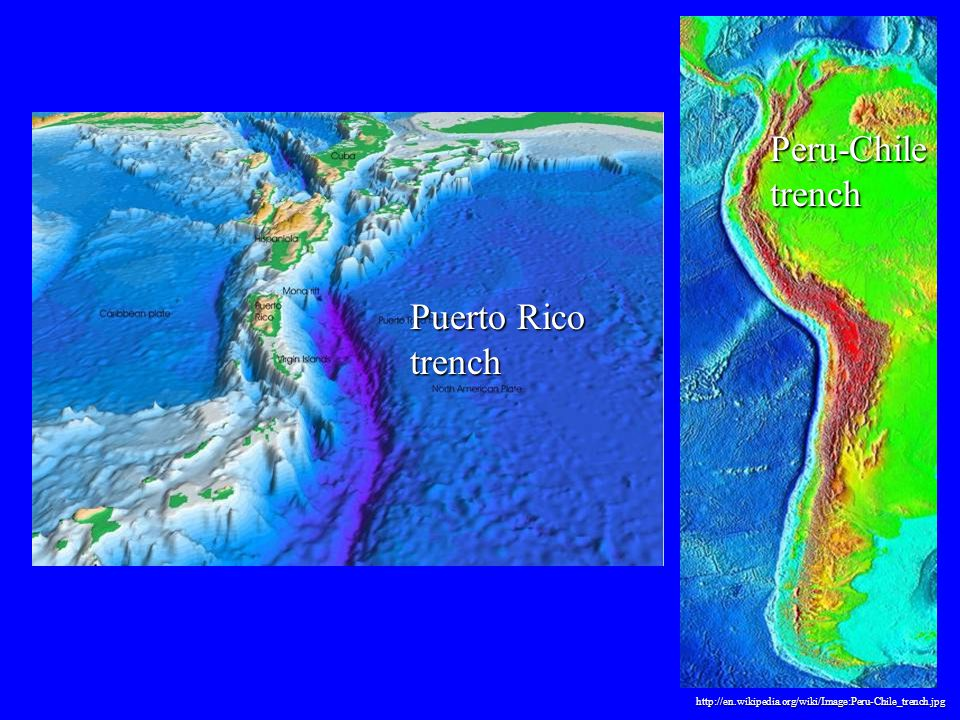 Peru-Chile trench http://en.wikipedia.org/wiki/Image:Peru-Chile_trench.jpg Puerto Rico trench
