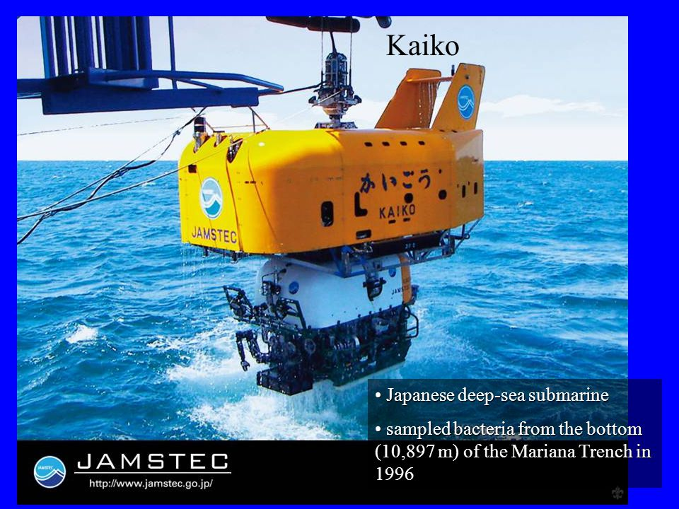 Kaiko Japanese deep-sea submarine Japanese deep-sea submarine sampled bacteria from the bottom (10,897 m) of the Mariana Trench in 1996 sampled bacter