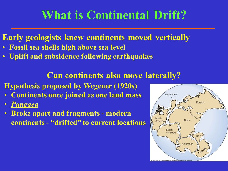 What was Wegener's Evidence for Continental Drift.