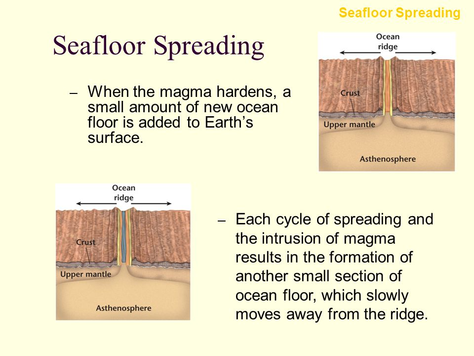 An American scientist named Harry Hess proposed the theory of seafloor spreading. Seafloor Spreading – Magma is forced toward the crust along an ocean