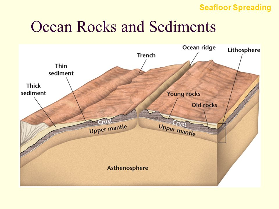 Ocean Rocks and Sediments Analysis of deep-sea rocks and sediments produced two important discoveries. Seafloor Spreading 1.The ages of the rocks that