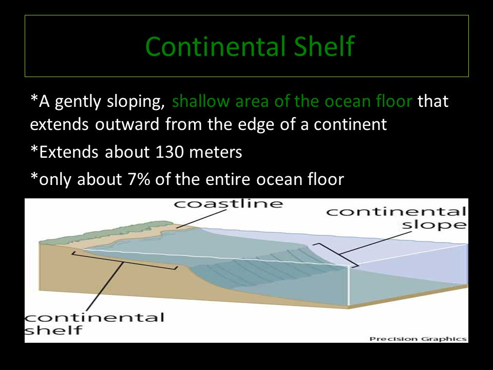 Continental Shelf *A gently sloping, shallow area of the ocean floor that extends outward from the edge of a continent *Extends about 130 meters *only about 7% of the entire ocean floor