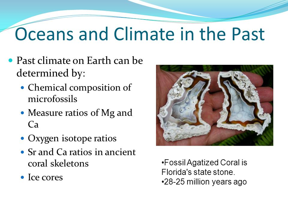 Oceans and Climate in the Past Past climate on Earth can be determined by: Chemical composition of microfossils Measure ratios of Mg and Ca Oxygen isotope ratios Sr and Ca ratios in ancient coral skeletons Ice cores Fossil Agatized Coral is Florida s state stone.