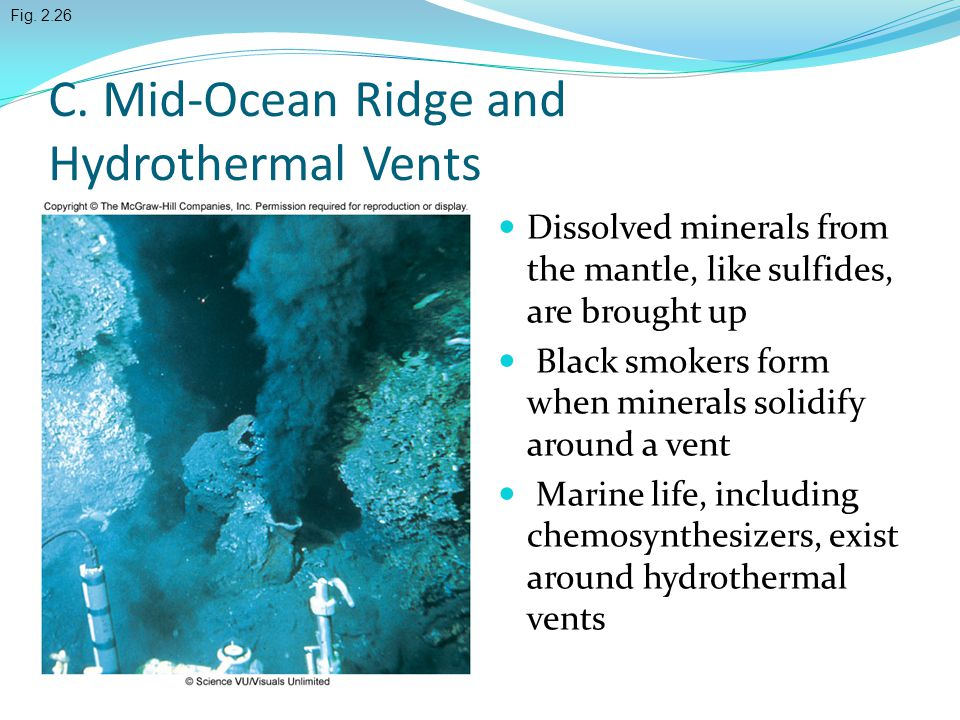 C. Mid-Ocean Ridge and Hydrothermal Vents Dissolved minerals from the mantle, like sulfides, are brought up Black smokers form when minerals solidify