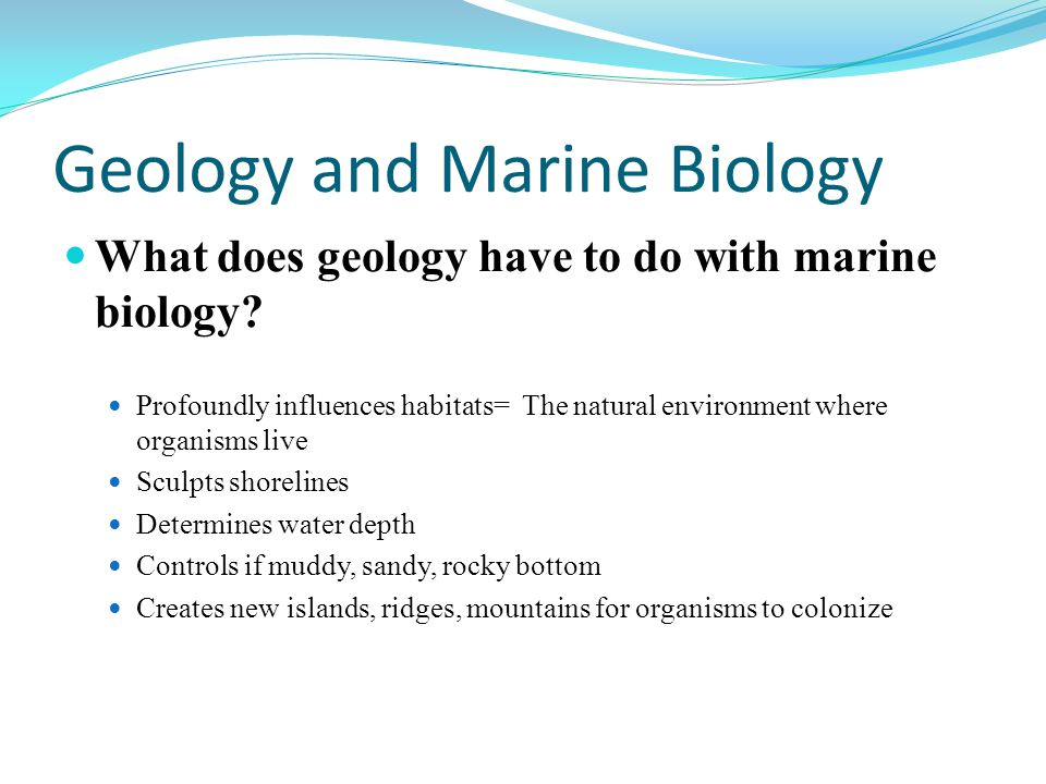 Geology and Marine Biology What does geology have to do with marine biology.
