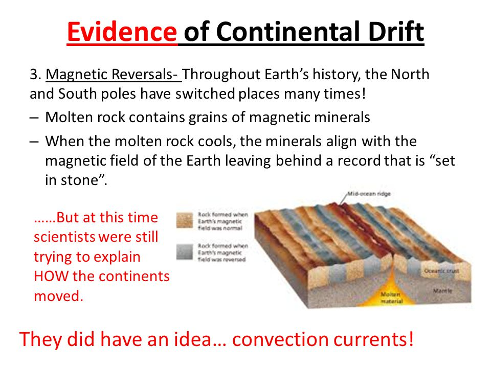 Evidence of Continental Drift 3.