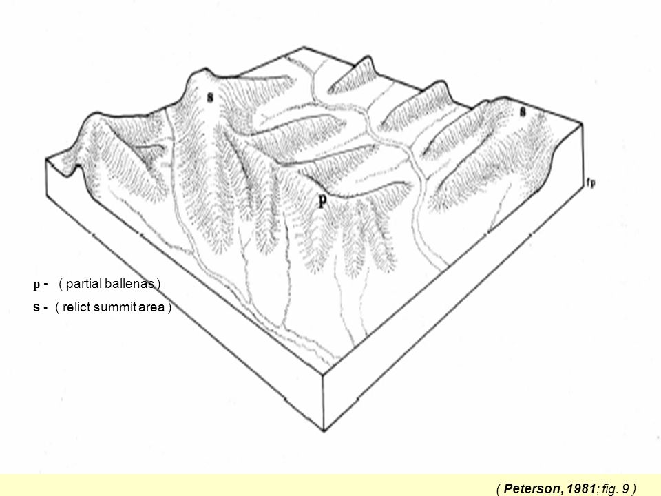 ( Peterson, 1981; fig. 9 ) p - ( partial ballenas ) s - ( relict summit area )