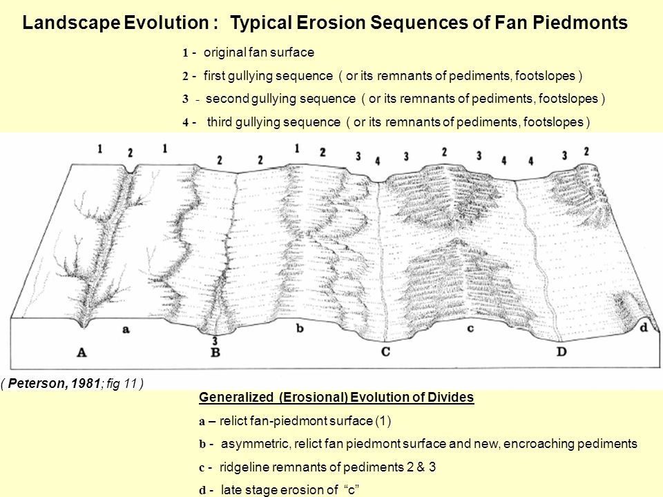 ( Peterson, 1981; fig 11 ) 1 - original fan surface 2 - first gullying sequence ( or its remnants of pediments, footslopes ) 3 - second gullying sequence ( or its remnants of pediments, footslopes ) 4 - third gullying sequence ( or its remnants of pediments, footslopes ) Landscape Evolution : Typical Erosion Sequences of Fan Piedmonts Generalized (Erosional) Evolution of Divides a – relict fan-piedmont surface (1) b - asymmetric, relict fan piedmont surface and new, encroaching pediments c - ridgeline remnants of pediments 2 & 3 d - late stage erosion of c