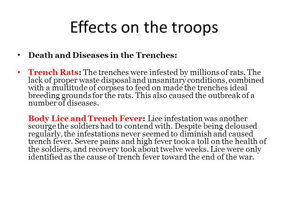 Effects on the troops Death and Diseases in the Trenches: Trench Rats: The trenches were infested by millions of rats.