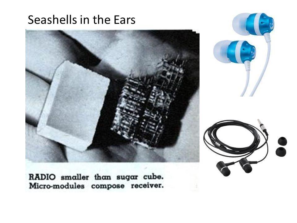 Seashells in the Ears
