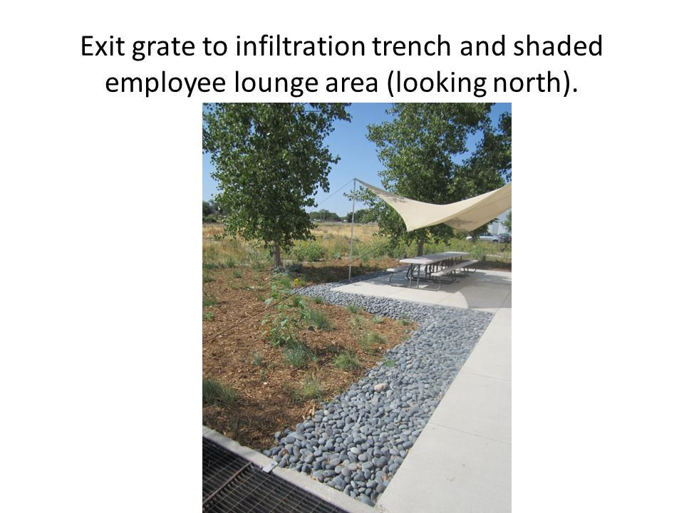 Exit grate to infiltration trench and shaded employee lounge area (looking north).