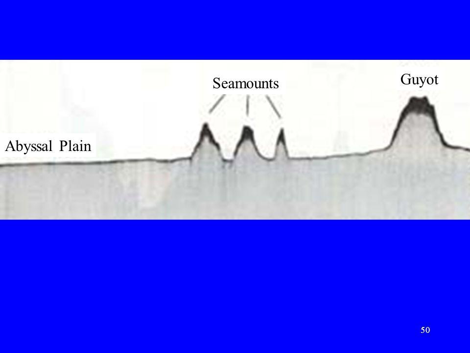 Abyssal Plain Seamounts Guyot 50