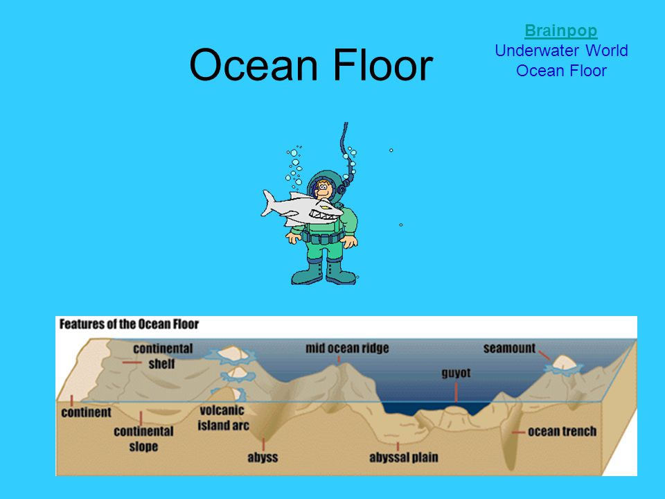 Ocean Floor Brainpop Underwater World Ocean Floor
