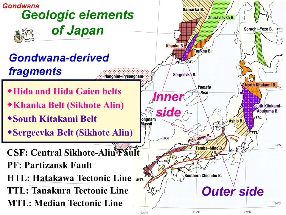 ◆ Hida and Hida Gaien belts ◆ Khanka Belt (Sikhote Alin) ◆ South Kitakami Belt ◆ Sergeevka Belt (Sikhote Alin) Geologic elements of Japan Inner side Outer side CSF: Central Sikhote-Alin Fault PF: Partizansk Fault HTL: Hatakawa Tectonic Line TTL: Tanakura Tectonic Line MTL: Median Tectonic Line Gondwana-derived fragments Gondwana
