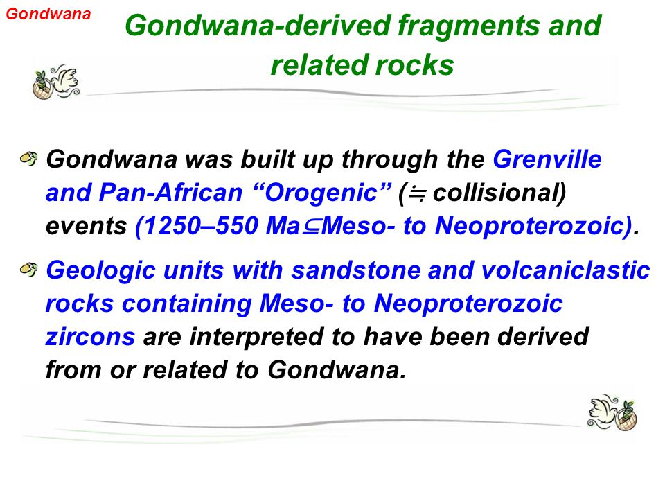 Gondwana-derived fragments and related rocks Gondwana was built up through the Grenville and Pan-African Orogenic ( ≒ collisional) events (1250–550 Ma ⊆ Meso- to Neoproterozoic).