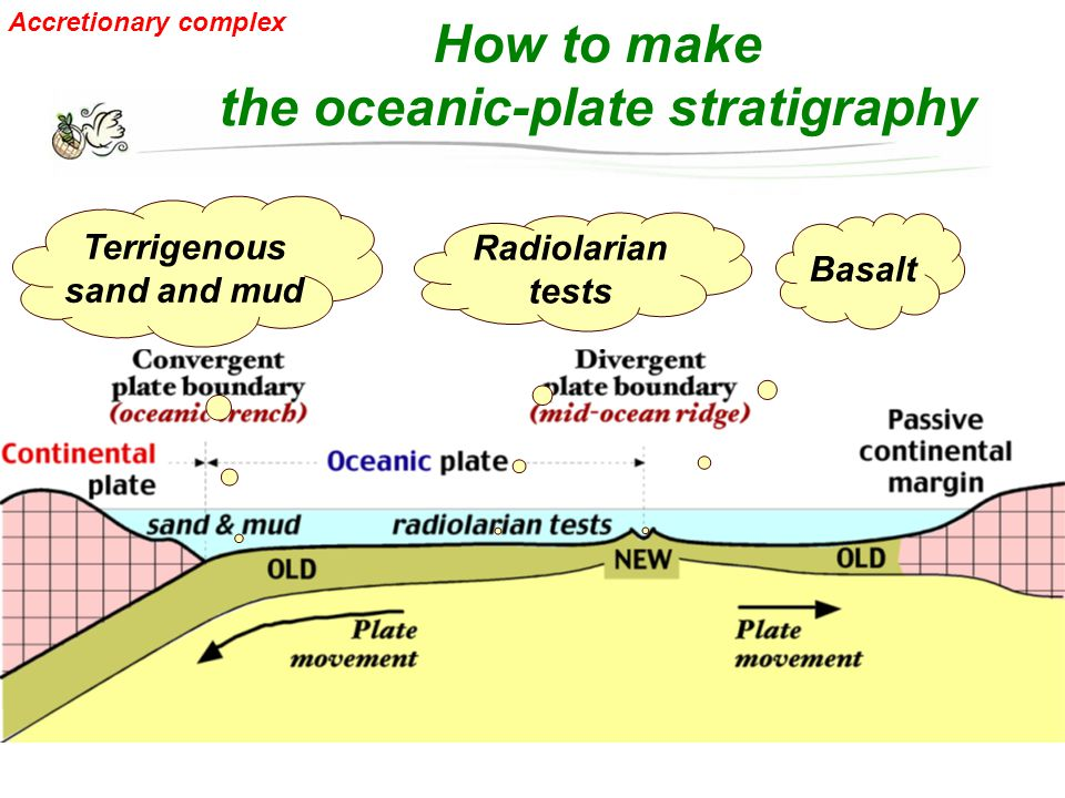 How to make the oceanic-plate stratigraphy Basalt Radiolarian tests Terrigenous sand and mud Accretionary complex