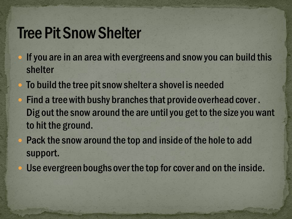 If you are in an area with evergreens and snow you can build this shelter To build the tree pit snow shelter a shovel is needed Find a tree with bushy branches that provide overhead cover.
