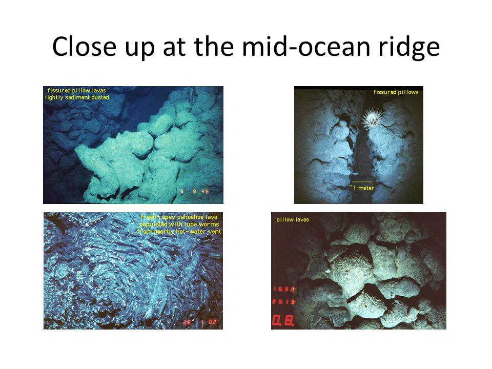 Close up at the mid-ocean ridge