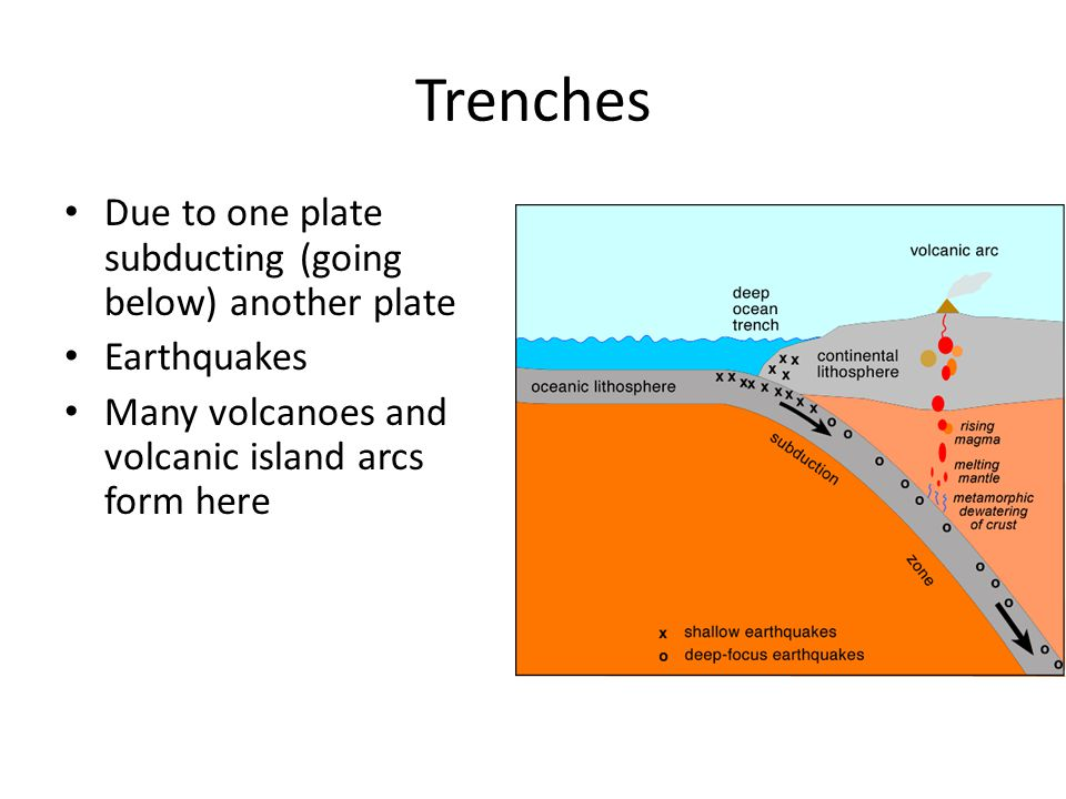 Trenches Due to one plate subducting (going below) another plate Earthquakes Many volcanoes and volcanic island arcs form here
