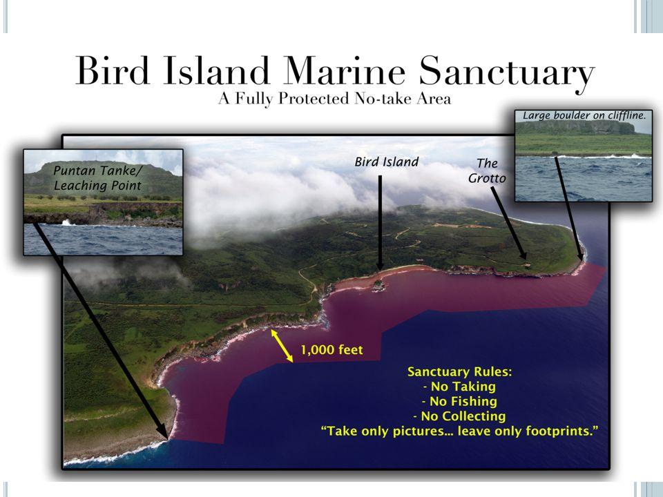 Bird Island Sanctuary Established through PL 12-46 No-Take Marine management plan developed in 2007 Grotto dive site