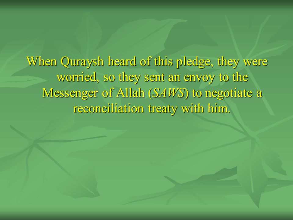 When Quraysh heard of this pledge, they were worried, so they sent an envoy to the Messenger of Allah (SAWS) to negotiate a reconciliation treaty with