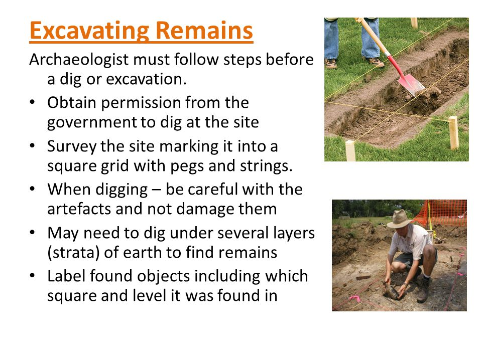 Excavating Remains Archaeologist must follow steps before a dig or excavation.