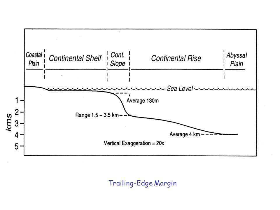 Trailing-Edge Margin