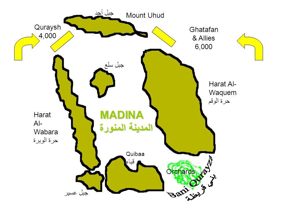 Mount Uhud جبل أحد Harat Al- Wabara حرة الوبرة MADINA المدينة المنورة Quibaa قباء Harat Al- Waquem حرة الوقم Orchards جبل سلع جبل عسير Ghatafan & Alli