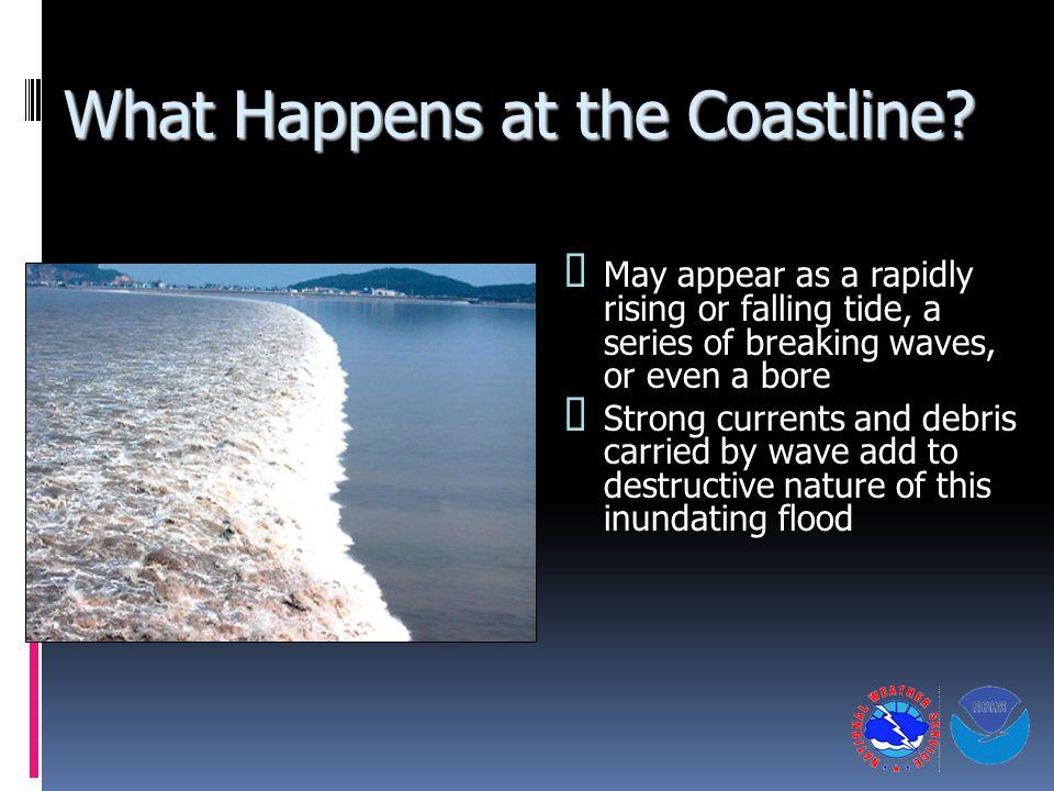 What Happens at the Coastline.