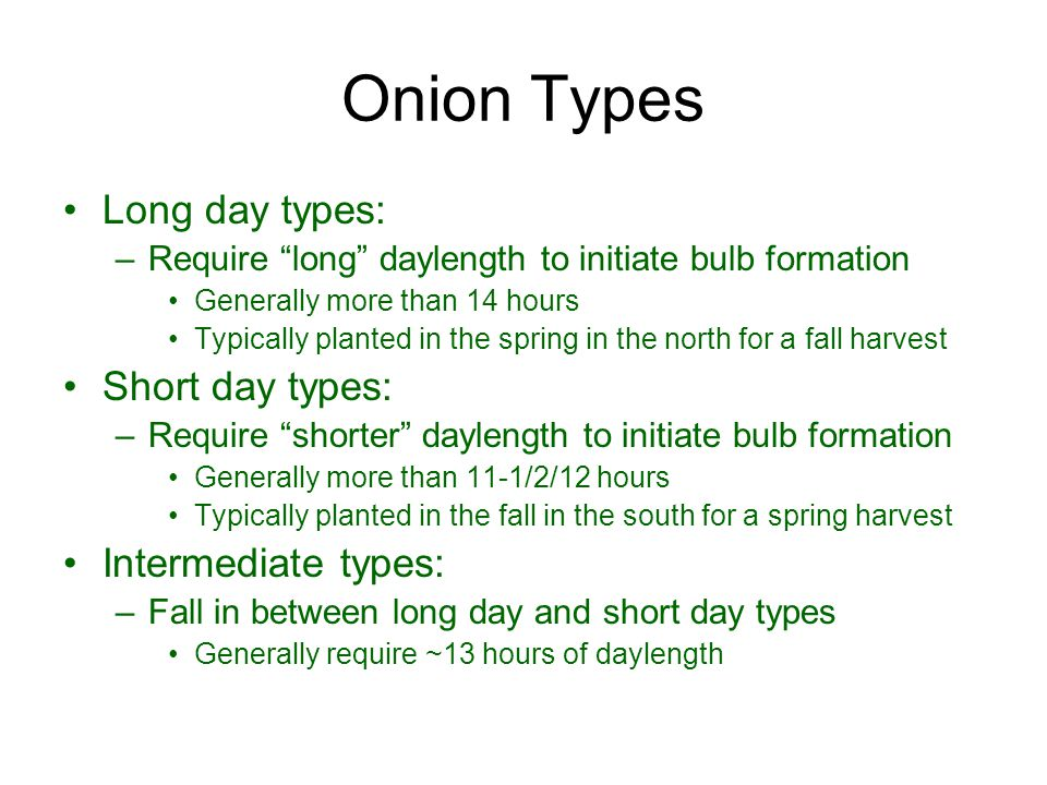"Onion Types Long day types: –Require ""long"" daylength to initiate bulb formation Generally more than 14 hours Typically planted in the spring in the n"