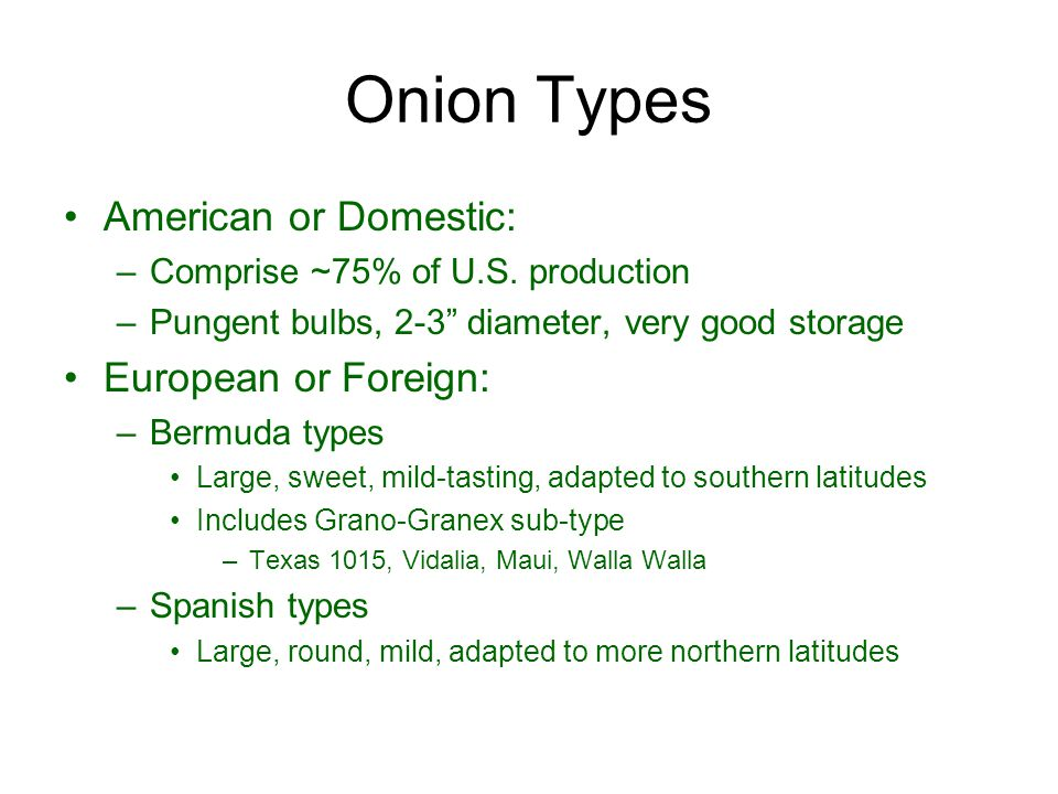 "Onion Types American or Domestic: –Comprise ~75% of U.S. production –Pungent bulbs, 2-3"" diameter, very good storage European or Foreign: –Bermuda typ"