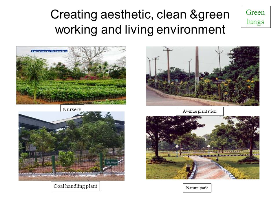 Creating aesthetic, clean &green working and living environment Green lungs Coal handling plant Avenue plantation Nature park Nursery