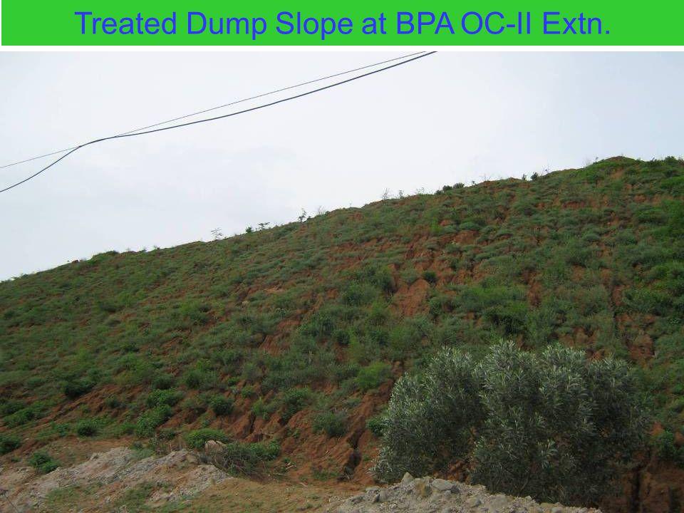 Treated Dump Slope at BPA OC-II Extn.