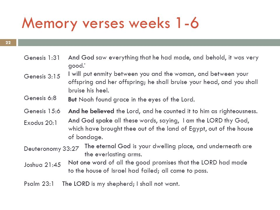 Memory verses weeks 1-6 22 Genesis 6:8 Genesis 1:31 And God saw everything that he had made, and behold, it was very good.' Genesis 3:15 I will put enmity between you and the woman, and between your offspring and her offspring; he shall bruise your head, and you shall bruise his heel.