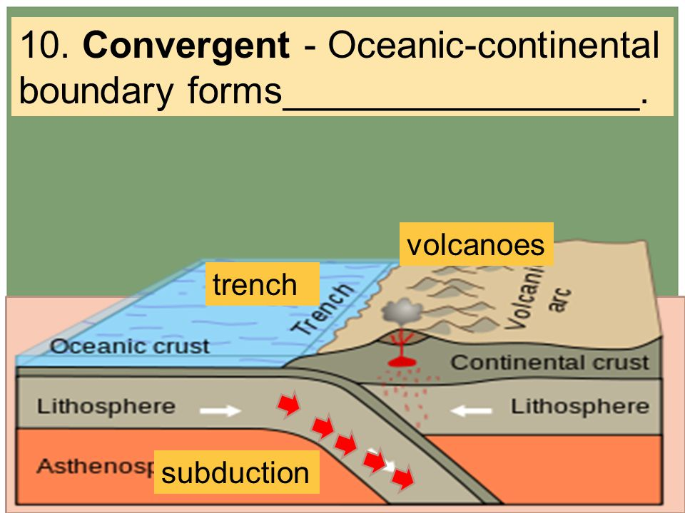 10. Convergent - Oceanic-continental boundary forms_________________. trench volcanoes subduction