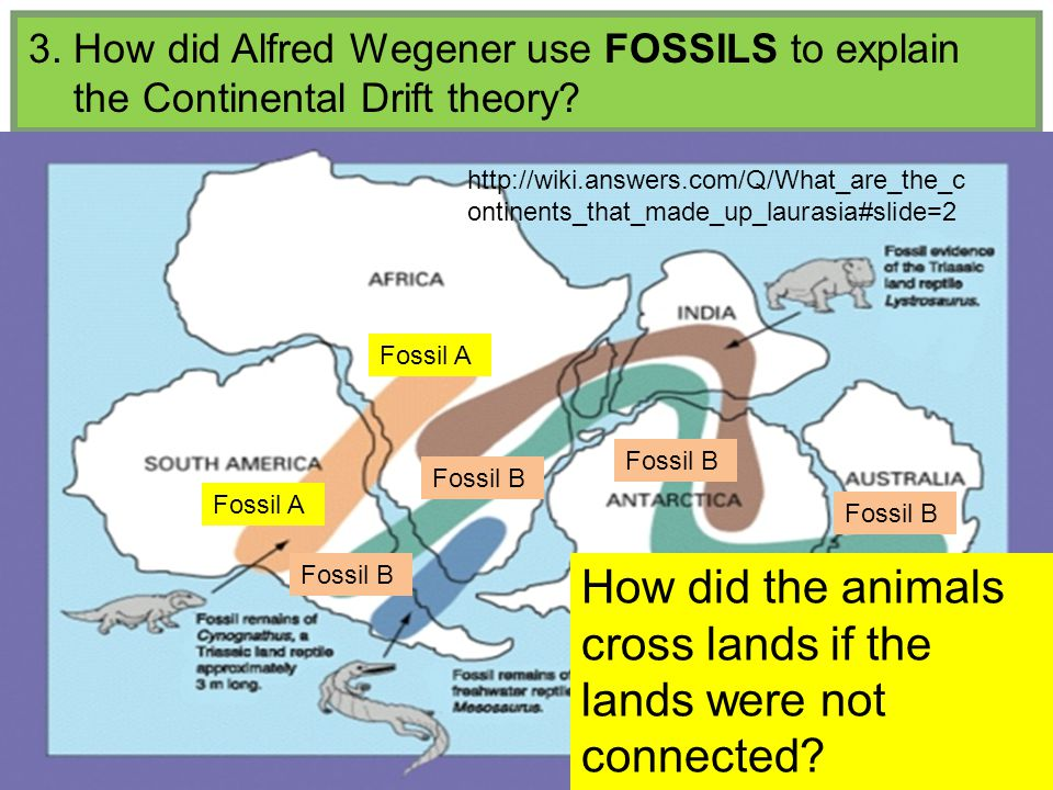 3. How did Alfred Wegener use FOSSILS to explain the Continental Drift theory.