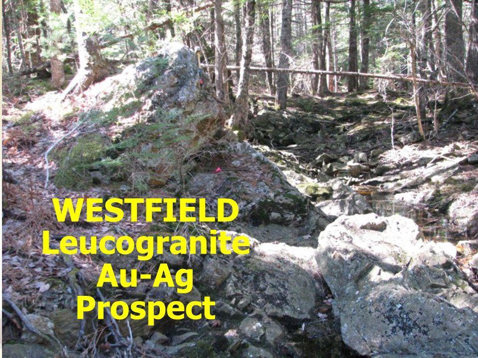 WESTFIELD Leucogranite Au-Ag Prospect